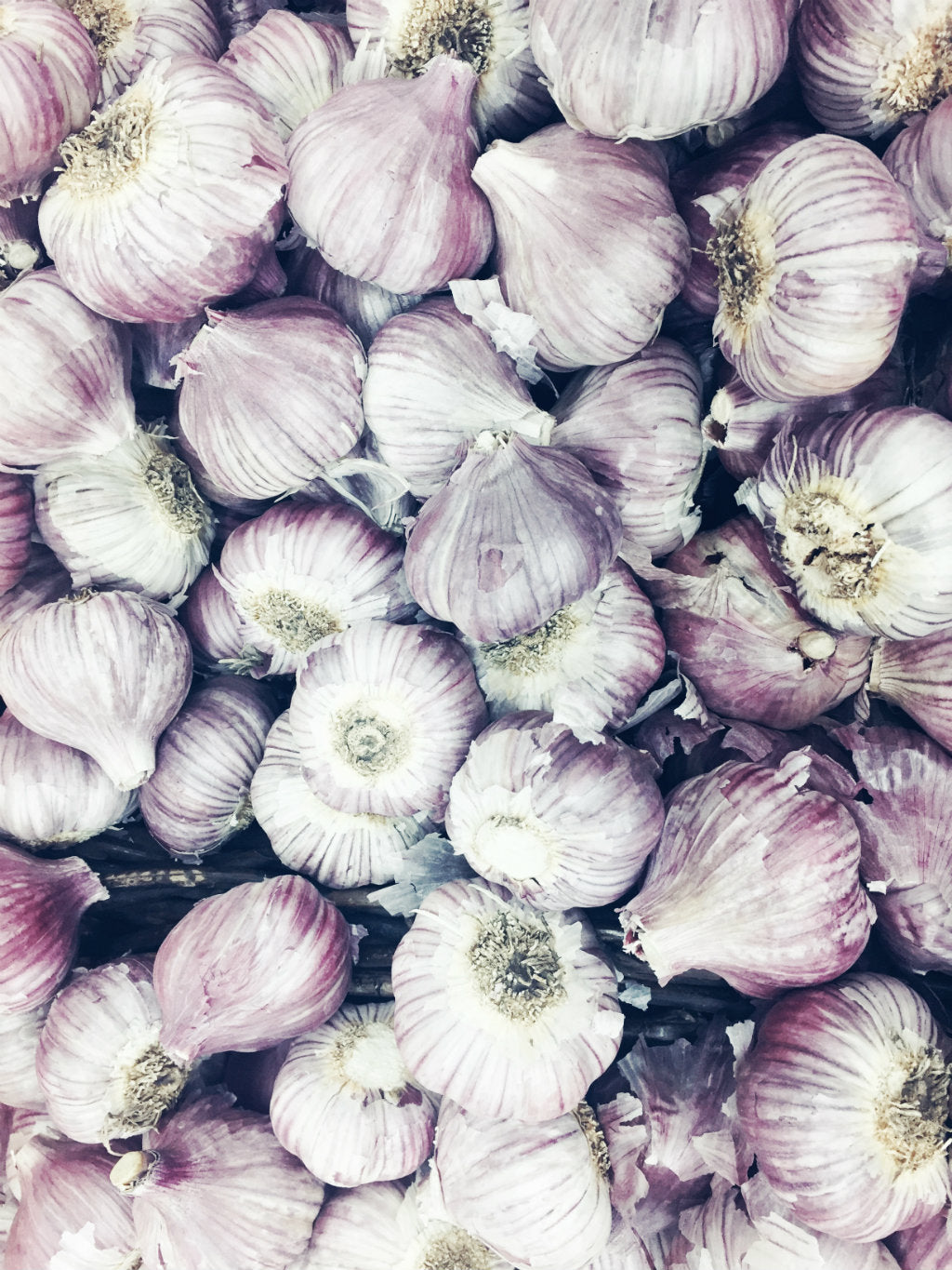 pick of the week - garlic