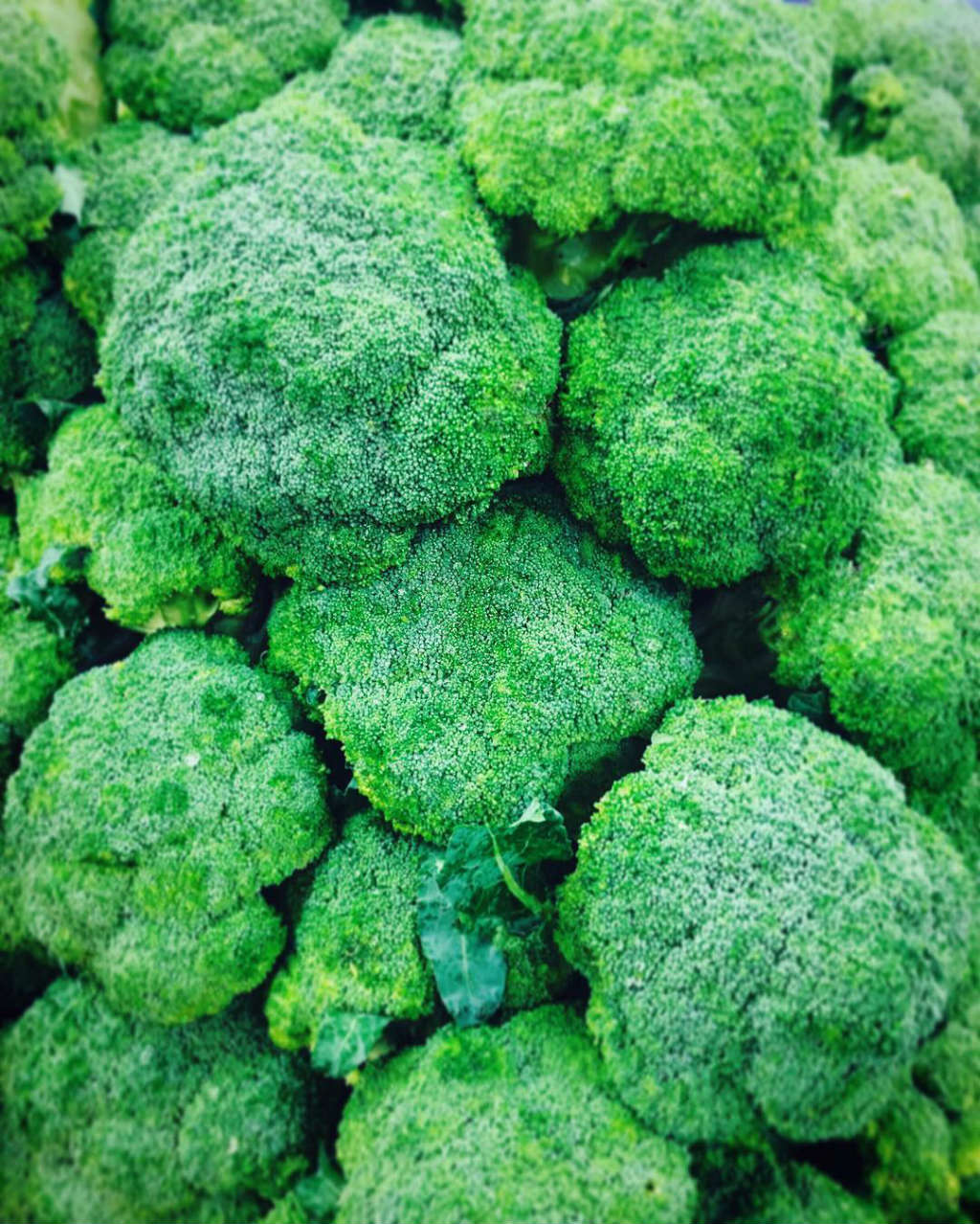 pick of the week broccoli