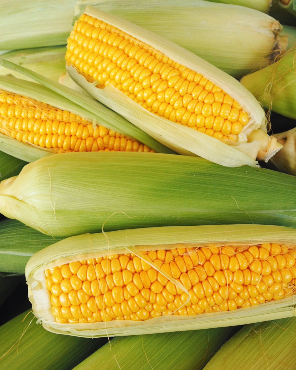 pick of the week corn