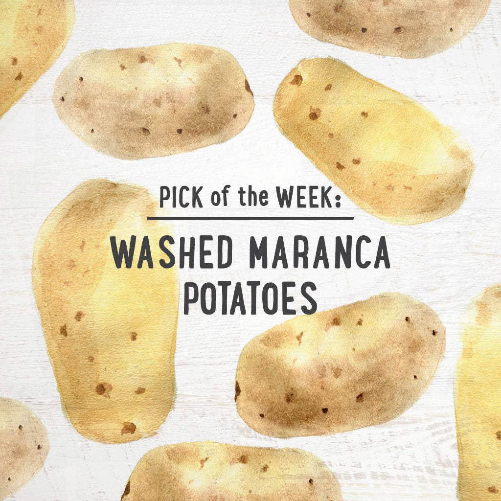 pick of the week washed maranca potatoes