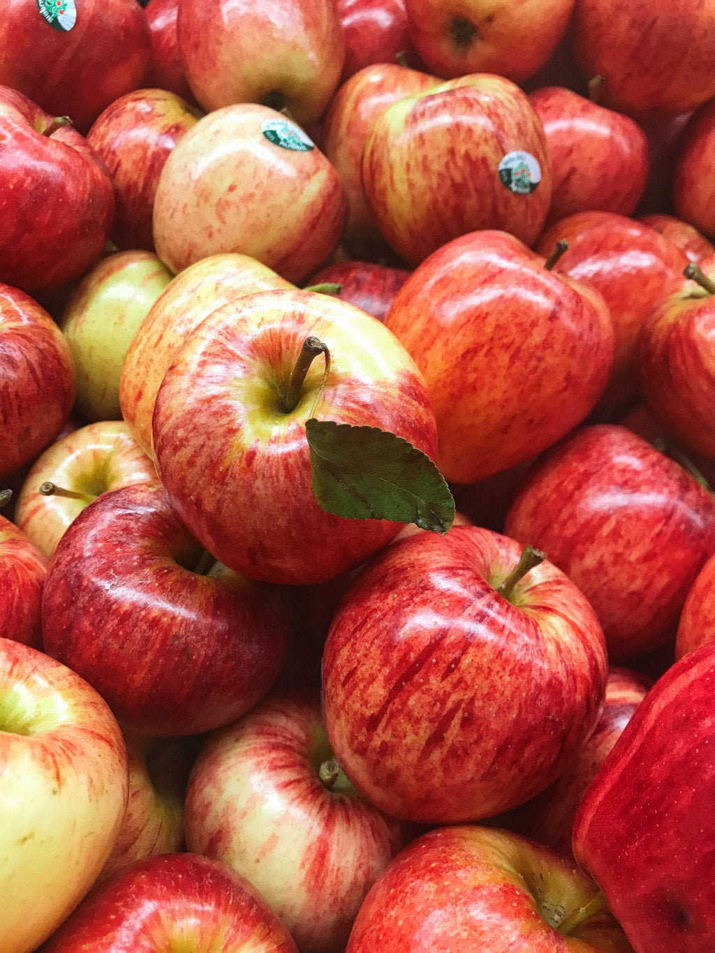 pick of the week new season gala apples