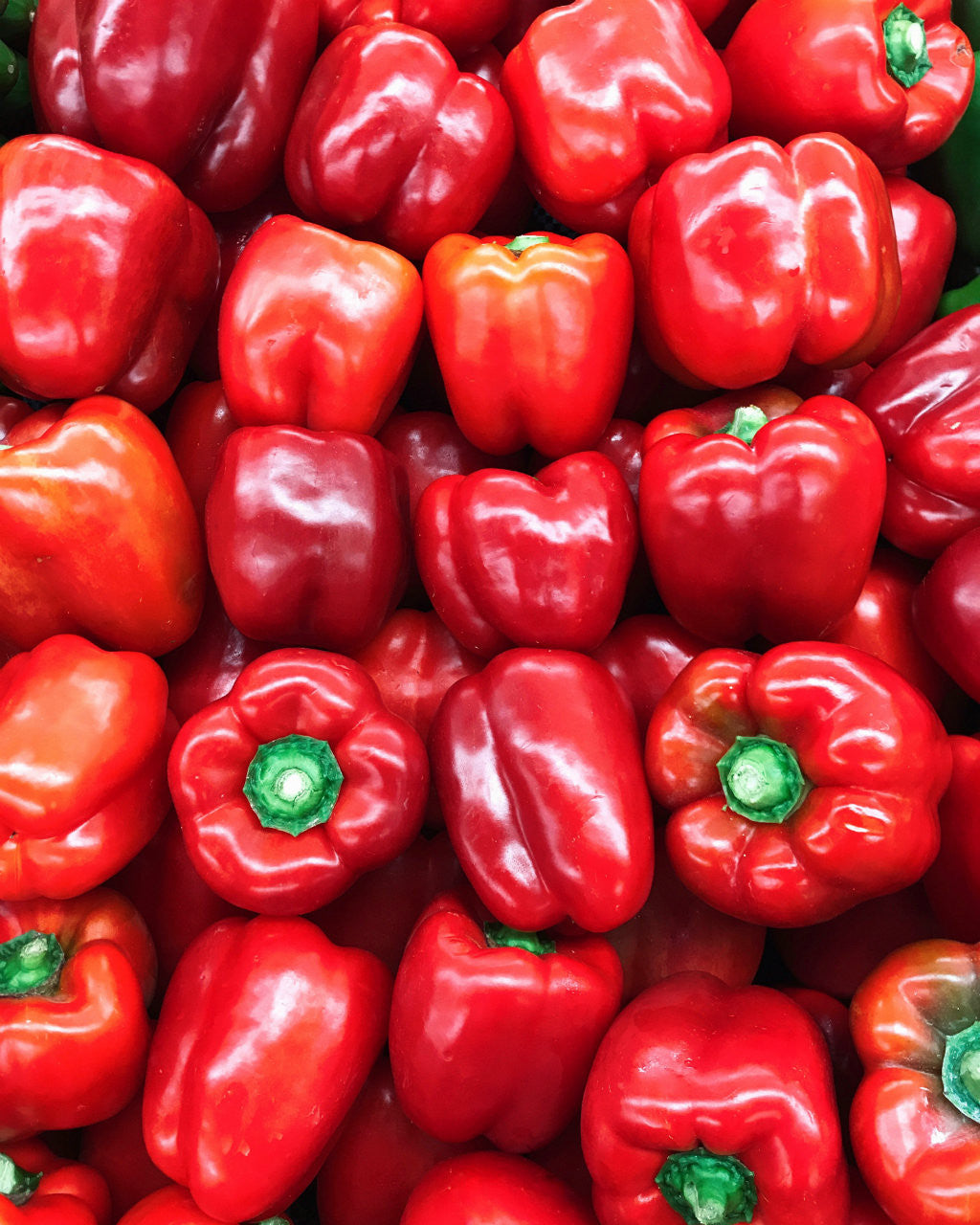 Pick of the Week - Red Capsicums | Harris Farm Markets