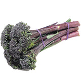 Broccolini Purple | Harris Farm Online