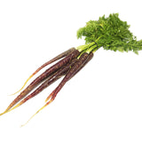 Carrots Dutch - Purple (bunch)