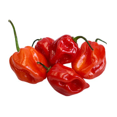 Chillies Habanero Red (min 50g)