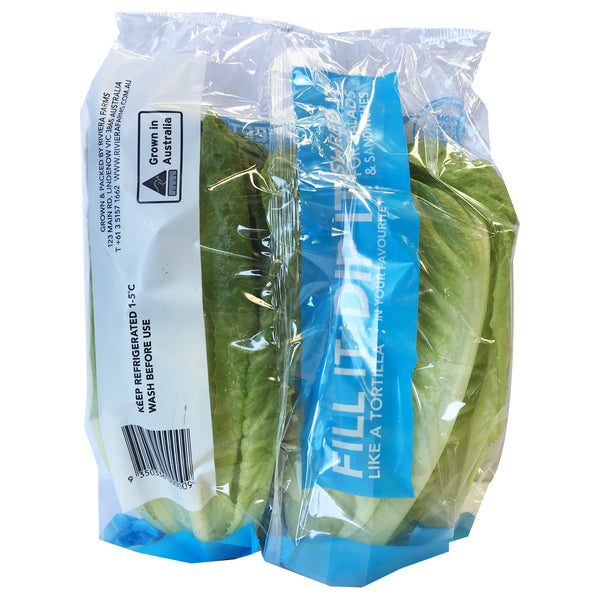 Lettuce Cos Baby | Harris Farm Markets