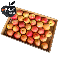 Apples Pink Lady Imperfect (Case Sale) | Harris Farm Online