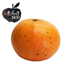 Imperfect Mandarins Murcott Large (each)