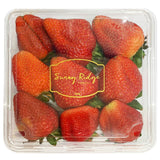 Strawberries Plates (400g pack)