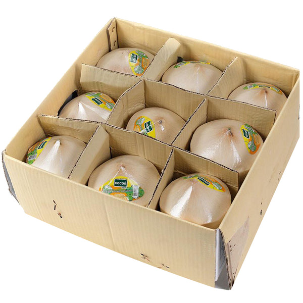 Coconuts Drinking (Case Sale) | Harris Farm Online