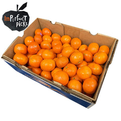 Mandarins Afourer (Imperfect Case Sale) | Harris Farm Online