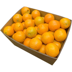 Oranges Navel Case | Harris Farm Online