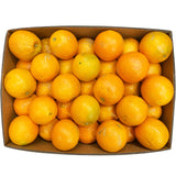 Fresh Oranges Navel (Case Sale) | Harris Farm Online