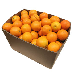 Oranges Valencia Box 15kg | Harris Farm Online