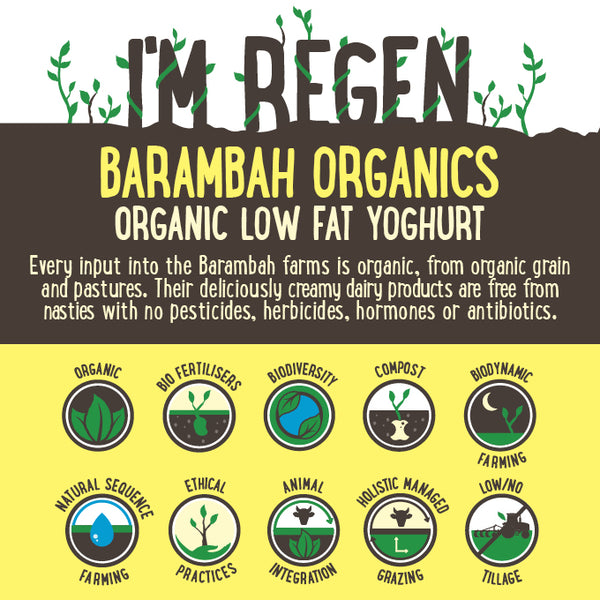 Barambah Organics Low Fat Natural Yoghurt | Harris Farm Online
