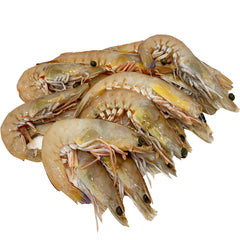 Raw King Prawns Large | Harris Farm Online