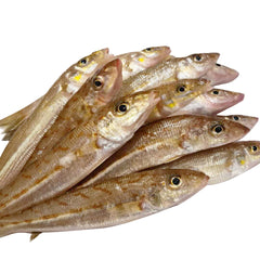 Sydney Fresh Seafood Red Spot Whiting Scaled Gutted and Head off | Harris Farm Online