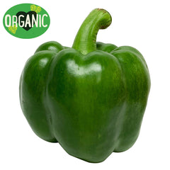 Capsicum Green Organic (each)