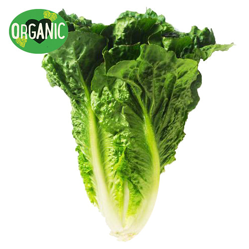 Lettuce Cos Organic (whole)