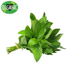 Mint Organic (bunch)