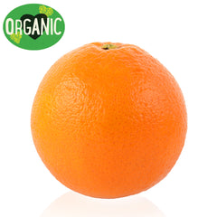 Orange Valencia Organic Each