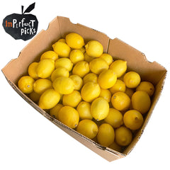 Lemon Imperfect Box | Harris Farm Online