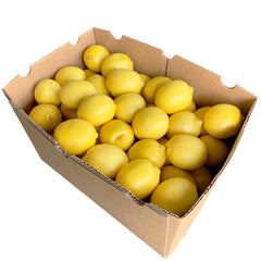 Lemon Box | Harris Farm Online