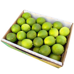 Lime Box 5kg | Harris Farm Online
