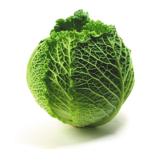 Cabbage Savoy (whole) , S03M-Veg - HFM, Harris Farm Markets