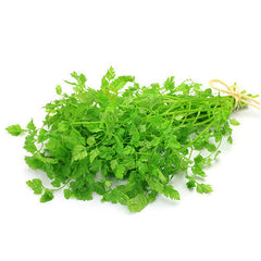 Chervil | Harris Farm Markets