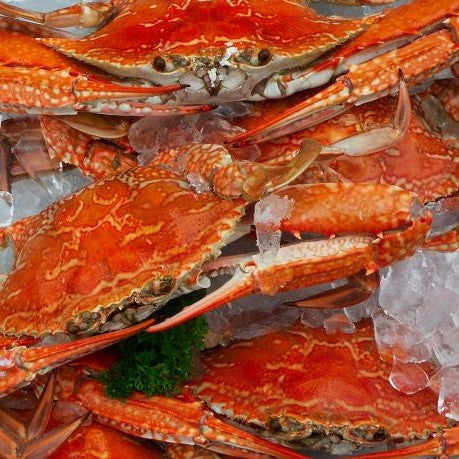 Crab Blue Swimmer Cooked (SFS) 350-400g , Fish - Fish, Harris Farm Markets