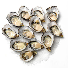 Oysters Pacific X-Large 1 doz , Fish - Fish, Harris Farm Markets