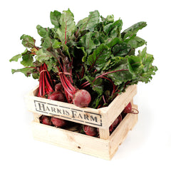 Beetroot (6 bunches) , Wholesale - HFM, Harris Farm Markets