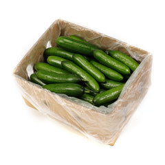 Cucumber Lebanese (box 10kg) , Wholesale - HFM, Harris Farm Markets