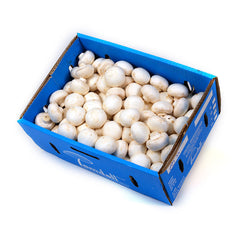 Mushrooms Button (box 4kg) , Wholesale - HFM, Harris Farm Markets
