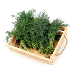 Dill (6 bunches) , Wholesale - HFM, Harris Farm Markets