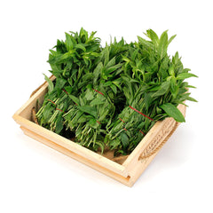 Mint (6 bunches) , Wholesale - HFM, Harris Farm Markets