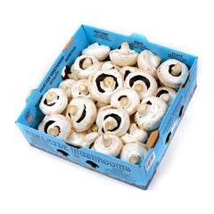 Mushrooms Flat (box 4kg) , Wholesale - HFM, Harris Farm Markets
