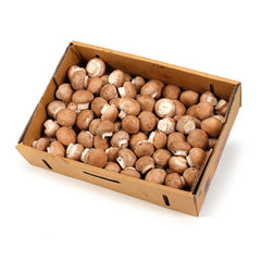 Mushrooms Swiss Brown (box 2kg) , Wholesale - HFM, Harris Farm Markets
