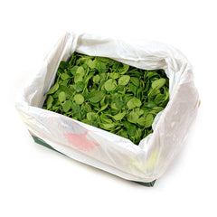 Salad Baby Spinach loose (box 3kg ) , Wholesale - HFM, Harris Farm Markets