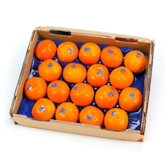 Fuyu Fruit Large (tray 16-20) , Wholesale - HFM, Harris Farm Markets