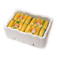 Corn Prepacked Prepack (box 12) , Wholesale - HFM, Harris Farm Markets