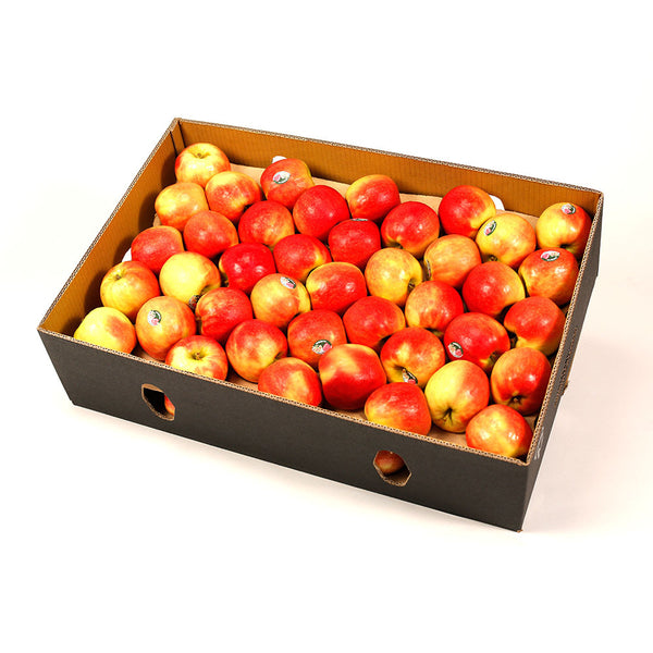 Apples Pink Lady (box 12kg) , Wholesale - HFM, Harris Farm Markets