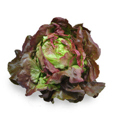 Lettuce Living - Mignonette Leaves (Large Red) (each) , S13S-Veg - HFM, Harris Farm Markets