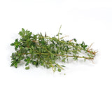 Thyme Lemon (each) , S13S-Veg - HFM, Harris Farm Markets  - 1
