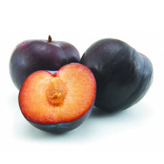 Plum Angelino Each