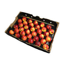 Nectarines Large (Tray 5kg) , Wholesale - HFM, Harris Farm Markets