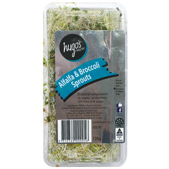 Sprouts - Alfalfa & Broccoli Sprouts | Harris Farm Online