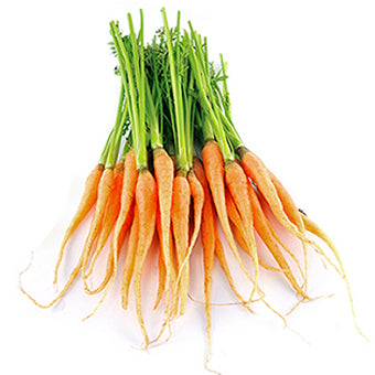 Carrots Dutch (bunch)