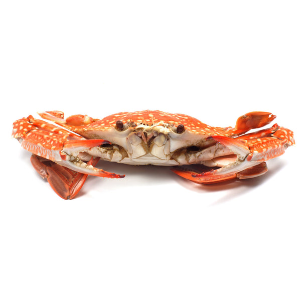 Crab - Cooked Blue Swimmer (350g) Cleaned